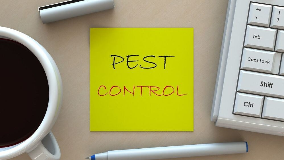 Yuba City Pest Control